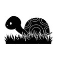 cute turtle in grass vector image