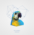 Abstract polygonal bird vector image vector image
