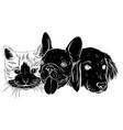 best friends ever - black vector image vector image