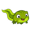 cartoon of a cute happy tadpole vector image vector image
