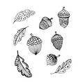 doodle acorns and leaves black outline vector image