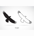 eagle is spreading its wings on white vector image