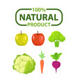 natural product vegetable and fruit poster vector image