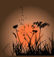 plants silhouettes on sunset background vector image vector image
