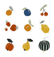 set garden fruits in a flat style on a white vector image vector image
