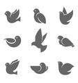 dove grey silhouette on white vector image