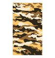abstract background camo flag pattern vector image