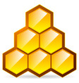 honeycomb honey cell icon isolated organic vector image