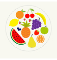 Juicy ripe fruit and berry set Banana cherry vector image vector image
