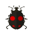 Ladybird in flat style vector image