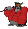 Monkey skier vector image vector image