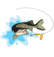 Pike and lure fishing vector image vector image