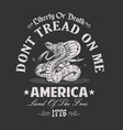 america dont tread on me vector image vector image