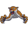 angry leaping leopard vector image vector image