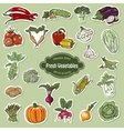 collection of icons vegetables vector image