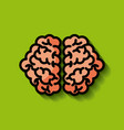 human brain concept image vector image