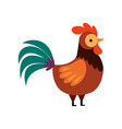 rooster with bright plumage farm cock side view vector image vector image
