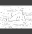 sea elephant on an ice floe vector image vector image