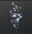 soap bubble realistic colorful shampoo ball vector image
