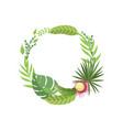 summer tropical leaves elegant frame with place vector image vector image