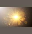 sunlight special lens flash light effect vector image