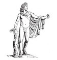 apollo of the belvedere is a front view of statue vector image