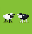 black and white sheep standing on green background vector image vector image
