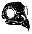 black silhouette bird skull vector image vector image