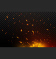bonfire sparks flying up burning fire vector image vector image
