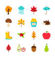 autumn flat objects vector image