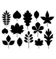 autumn leaves shapes silhouettes outline icons set vector image
