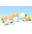 eggs and spring flowers on blue background vector image vector image