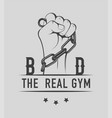 real gym vector image