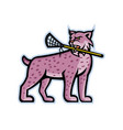 bobcat or lynx lacrosse mascot vector image vector image