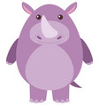 cute rhino on white background vector image