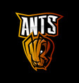 furious ant sport logo concept isolated on vector image