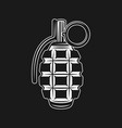 grenade isolated on black background vector image