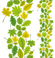 Leaves seamless wallpaper background natural vector image vector image
