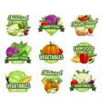 vegetables icons farm market food veggies vector image vector image