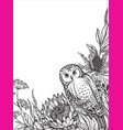 beautiful frame with black and white owl vector image