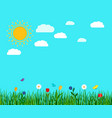 spring flowers and butterfly landscape vector image