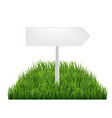 wooden signs with green grass vector image vector image