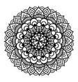 black pattern flower mandala vector image