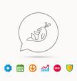 Dolphin icon cetacean mammal sign vector image