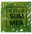 hello summer background with tropical green leaves vector image