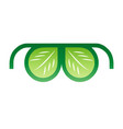 icon of glasses with leaves vector image