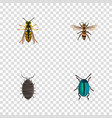 realistic dor bug wasp and other elements vector image