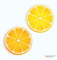 fresh lemon and orange slice icon on a white vector image vector image