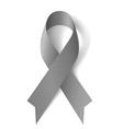 Gray ribbon vector image vector image