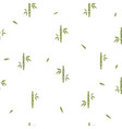 seamless pattern with bamboo on white background vector image vector image